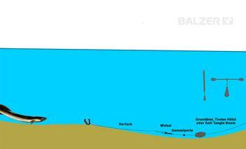 BALZER - Aalangeln Grundmontage
