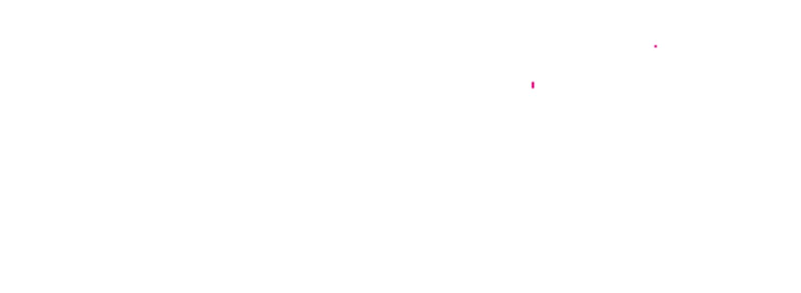 Logo Camtec Speci